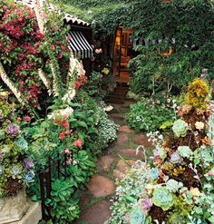 A succulent garden with other lovelies such as foxglove and bougainvillea. Mod Vintage Life: Succulents