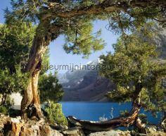 Lake at the forest fotobehang uit de collectie Photoprints wall collection van AG Design koop je bij kleurmijninterieur