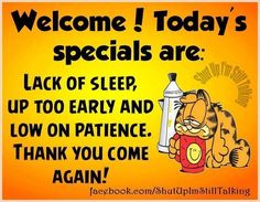 Todays Specials Joke Todays Specials Joke funny quotes quote jokes garfield lol funny quote funny quotes funny sayings h Garfield Quotes, Garfield Cartoon, Garfield And Odie, Garfield Comics, Garfield Pictures, Hump Day Quotes, Jokes Quotes, Morning Quotes, Daily Quotes