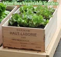 Wine Box Vegetable Garden  love this vegetable garden: it is practical (for small gardens and balconies), inexpensive and, not unimportant, it looks good! Wooden wine boxes are used as plant containers.  Click HERE To See Wine Box Vegetable Garden