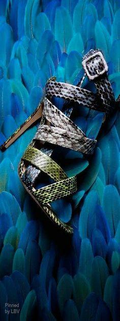 Python sandals | LBV ♥✤