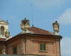 giovedì 19 maggio 2011 CICOGNE A TORINO. IL CASTELLO DI RACCONIGI.