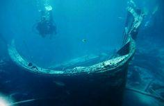 Sicherheit beim Tauchen! Schütze dich und deinen Buddy! Sea State, Diving, Safety