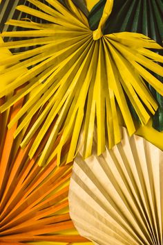 Come learn how to make these stunning palm leaves the will brighten up any home as we come into this cold weather!