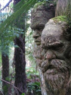 William Ricketts Sanctuary in Victoria, Australia by Matthew Tulett, via Flickr
