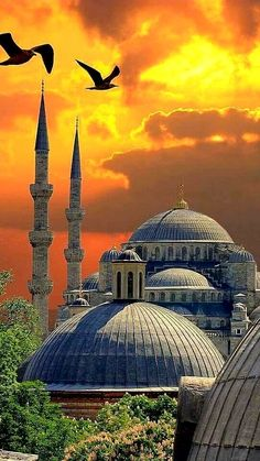İstanbul TURKEY Beautiful Mosques, Beautiful Buildings, Beautiful Places In The World, Wonderful Places, Places To Travel, Places To Visit, Countries Europe, Nature Landscape, Beau Site