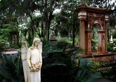 Bonaventure Cemetery in Savannah, GA... One of the most beautiful places on earth <3