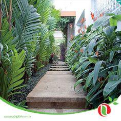 37 Ideas For Backyard Tropical Oasis Decks Tropical Garden Design, Tropical Backyard, Tropical Landscaping, Backyard Landscaping, Palm Trees Landscaping, Tropical Gardens, Tropical Plants, Side Garden, Garden Paths