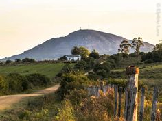 Cerro Pan de Azúcar. I want to go back and climb to the top and visit the nature reserve again. Someday.