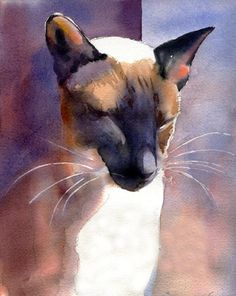 Siamese watercolor by Rachel Parker - ego-alterego.com