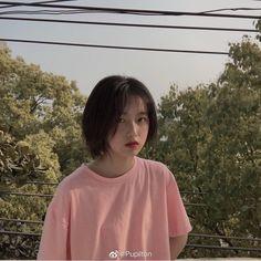 Visit Us : www. Ulzzang Short Hair, Korean Short Hair, Ulzzang Korean Girl, Shot Hair Styles, Curly Hair Styles, My Hairstyle, Girl Hairstyles, Very Pretty Girl, Girl Short Hair