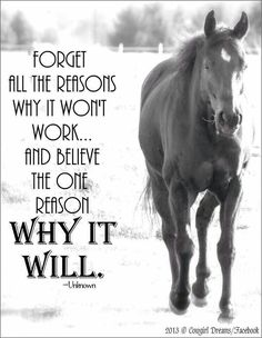 Positive quotes about strength, and motivational Great Quotes, Quotes To Live By, Me Quotes, Qoutes, Rodeo Quotes, Racing Quotes, Inspirational Horse Quotes, Inspiring Quotes, Motivational Quotes