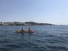 Todos los sábados hasta el 30 de septiembre, visitas gratuitas en kayak para ir a conocer la #Posidonia #EivissaPosidonia #IbizaPosidonia On Saturdays, free visits to Posidonia in kayak.