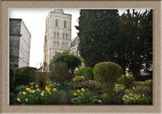 The winter is finished - spring arrived - see how amazing the March in Ashby de la Zouch . UK . can be.