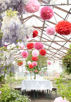 Paper Pom Poms (outdoor decoration)