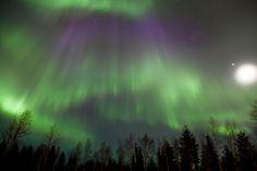 - Arctic Circle Snowmobile Park in Santa Claus Village – Rovaniemi Safaris – Lapland - Finland Santa Claus Village, Lapland Finland, Arctic Circle, Luxury Travel, Wilderness, Safari, Northern Lights, Explore, Vacation