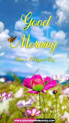 Here are the Greatest collection of Beautiful Good Morning Video which you must sharing with your friends, carrying love, besties & family…. Good Morning Rainy Day, Happy Good Morning Quotes, Good Morning Sister, Good Morning Wednesday, Good Morning Prayer, Good Morning Greetings, Morning Prayers, Best Good Morning Messages, Best Good Morning Images