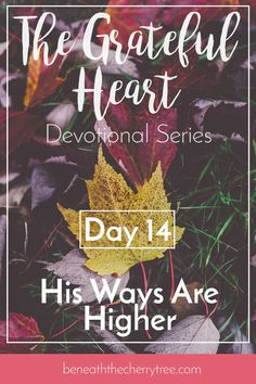 His Ways Are Higher (Day 14) Encouragement for Women | Thanksgiving Devotionals | His Ways are Higher | Learning to Trust God | Hope | Beneath the Cherry Tree http://www.beneaththecherrytree.com/his-ways-are-higher-day-14/