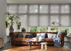 Choosing the right type of window treatment can feel like a baffling process with the multitude of choices in the market place. Hunter Douglas, Roman Blinds, Curtains With Blinds, Valance Curtains, Honeycomb Blinds, Types Of Blinds, Types Of Window Treatments, Privacy Blinds, Roller Blinds