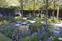Chelsea Flower Show 2014 Show Garden Photos - Garden Design Unlimited