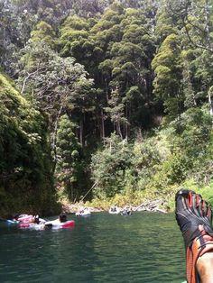 One of Oahu's secrets: Tubing the Wahiawa Stream - Imgur