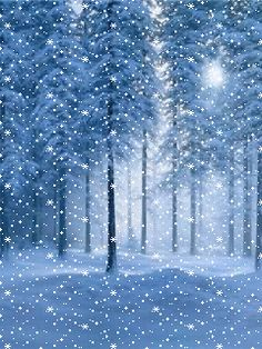 Winter Christmas Scenes, Merry Christmas Gif, Christmas Scenery, Winter Scenery, Christmas Images, Christmas Art, Christmas Greetings, Snowy Pictures, Holiday Pictures