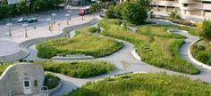 verde-in-città