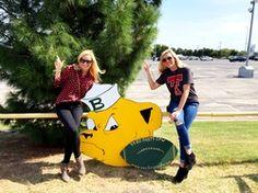 Yard party dfw. Yard sign. sic em. Baylor Bears. Celebrate.