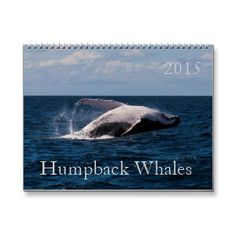 Sold! This 2015 calendar features a variety of photos of Humpback Whales taken during their annual migration in the waters off Surfers Paradise, Australia. #whale #whales #humpback #humpbacks #breaching #wildlife #humpbackwhale #tailfluke #ocean #sea