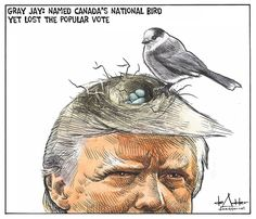 Gray Jay-Lost the popular vote. John Trump, Donald Trump, Gray Jay, White House Trump, Today Cartoon, Very Funny Pictures, Evil Empire, Current President, Canada Eh