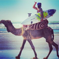 "@Sonia Rivera Channel's photo: ""Save gas, ride a #camel!"
