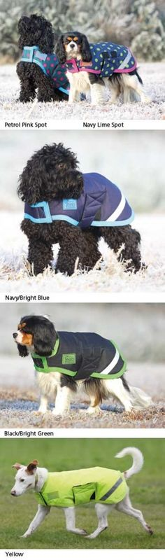 Shires Waterproof Dog Coat Size XX Small  32cm image