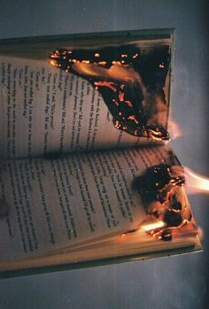 """The fire ate at the words, gorged itself on the lives within the pages, tore at the fabric of the worlds between the covers.""-- loved the previous pinner's comment!!"
