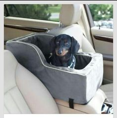 Car seat for dog. No more sliding.