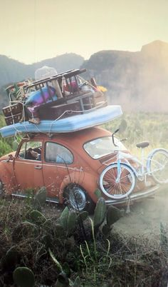 If only i could go on a Summer escape - road trip VW bug