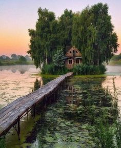 Abandoned swamp house in the morning More memes, funny videos and pics on Abandoned Mansion For Sale, Abandoned Mansions, Abandoned Houses, Abandoned Places, Old Houses, Places To Travel, Places To Visit, Nature Aesthetic, Into The Woods