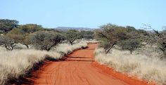 Mokala National Park, South Africa | Red roads