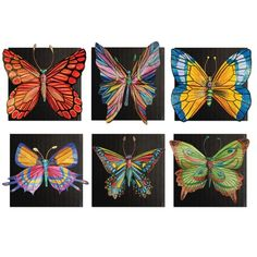 Butterfly Collection - Project #147  http://www.unitednow.com/product/10772/butterfly-collection-project-147.aspx?item=22652