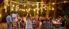 Beautiful outdoor lane wedding Nooitgedacht by Greg Lumley