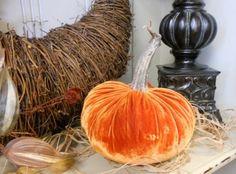Orange Pumpkin | English Ivy Gifts
