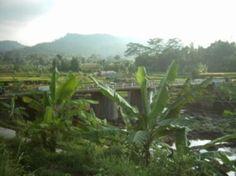 Jembatan Tersono, Batang