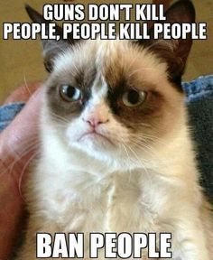 Grumpy cat frowns on your shenanigans. Grumpy cat is not impressed. I wonder if grumpy cat is an engineer. I did find some Grumpy Cat gifs: Grumpy Cat say \ Grumpy Cat Quotes, Funny Grumpy Cat Memes, Funny Animal Memes, Funny Animal Pictures, Funny Pics, Funny Animals, Funny Jokes, Funniest Animals, Funny Images