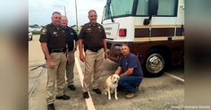 UPDATE: Sheriff Adopts Dog Found Chained to House in Texas Flood