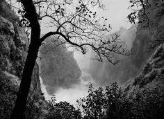 Sebastiao Salgado, Victoria Falls with Tree, gelatin silver print Urban Photography, Street Photography, Landscape Photography, Minimalist Photography, Color Photography, Documentary Photographers, Famous Photographers, Fotojournalismus, Post Mortem