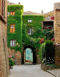 Arch Entry, Civita di Bagnoregio, Italy  ivy covered walls, vertical garden