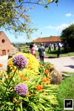 Huntstile Organic Farm in July