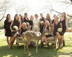 Another great example of a bride giving the bridesmaids guidance on color but allow them to choose individual styles in which they each feel comfortable and look great. www.destinationweddingdirectory.co