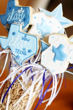 A New Star In Texas   Cookies In Color   Shannon Tidwell