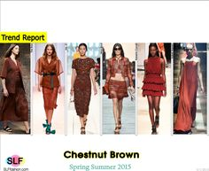 Trendy Colors for SS 2015: Chestnut Brown (autumn shades).  The Row, No. 21, Nina Ricci, Roberto Cavalli, Isabel Marant, and Lanvin Spring Summer 2015.