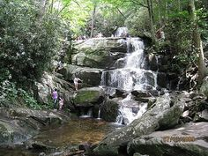 Laurel Falls Pigeon Forge, TN